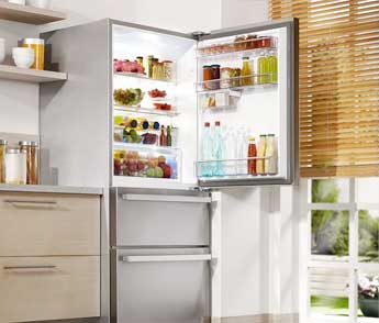 LG refrigerator repair in Boise.